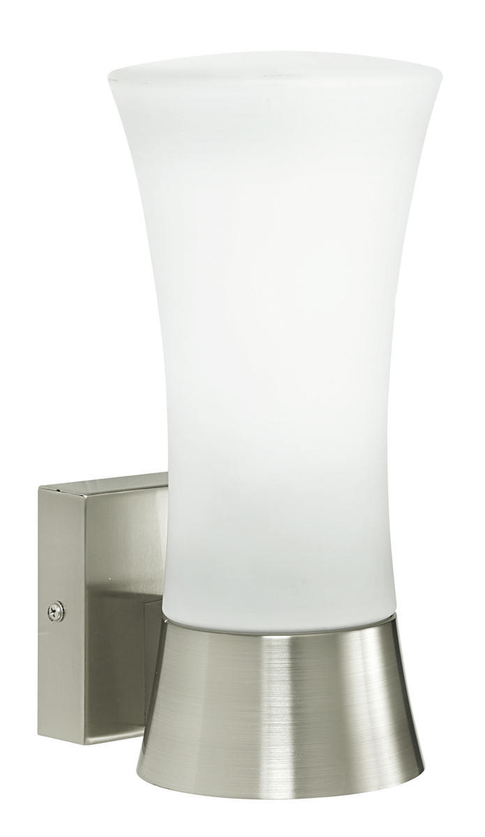 1x60W Outdoor Wall Light w/ Stainless Steel Finish & Opal Frosted Glass
