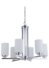 Jeremiah 39726-CH - Albany 6 Light Chandelier in Chrome